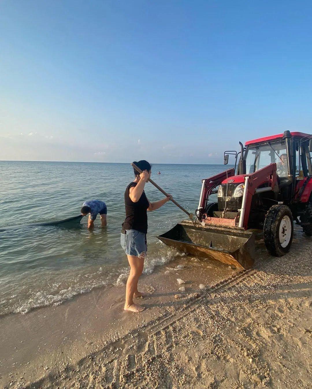 Туристи прибирають мертвих медуз