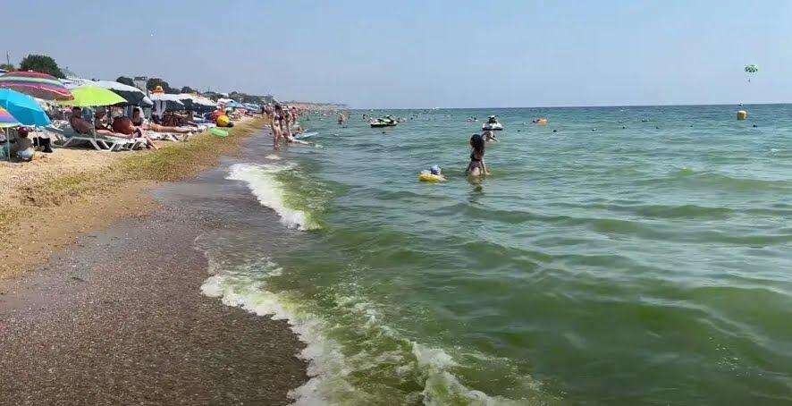 У Грибівці позеленіло море.