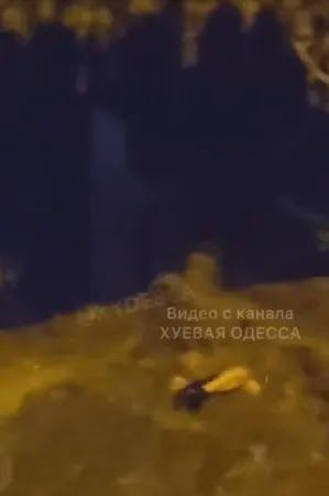 Тіло відносило в море в районі Аркадії
