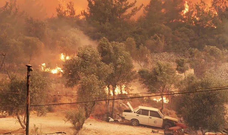 В Турции до сих пор не потушили пожары.