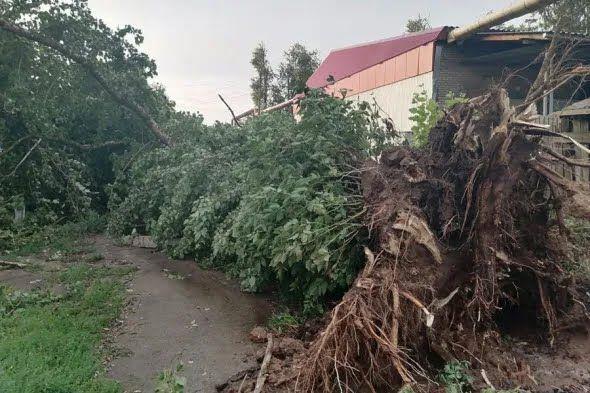 У місті тривають роботи з ліквідації наслідків урагану.