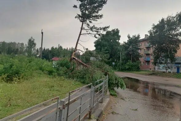 Три людини загинули в результаті урагану в Тверській області.