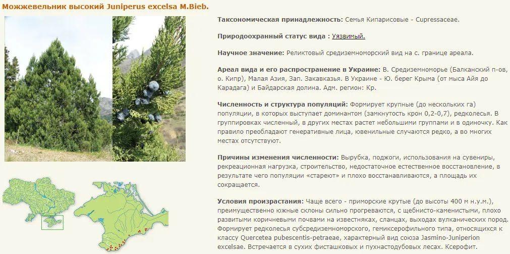 Інформація про вид, внесений до Червоної книги