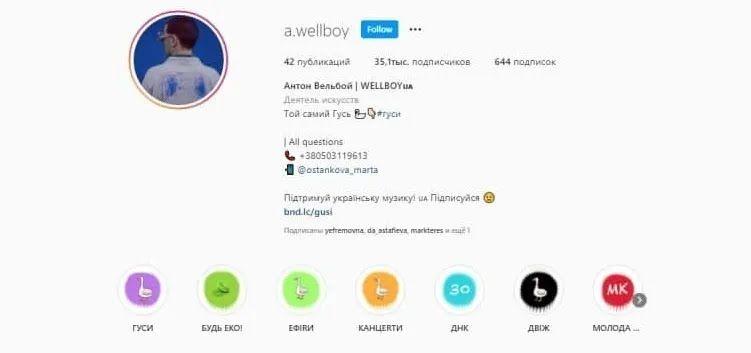 Профиль в Instagram Wellboy.