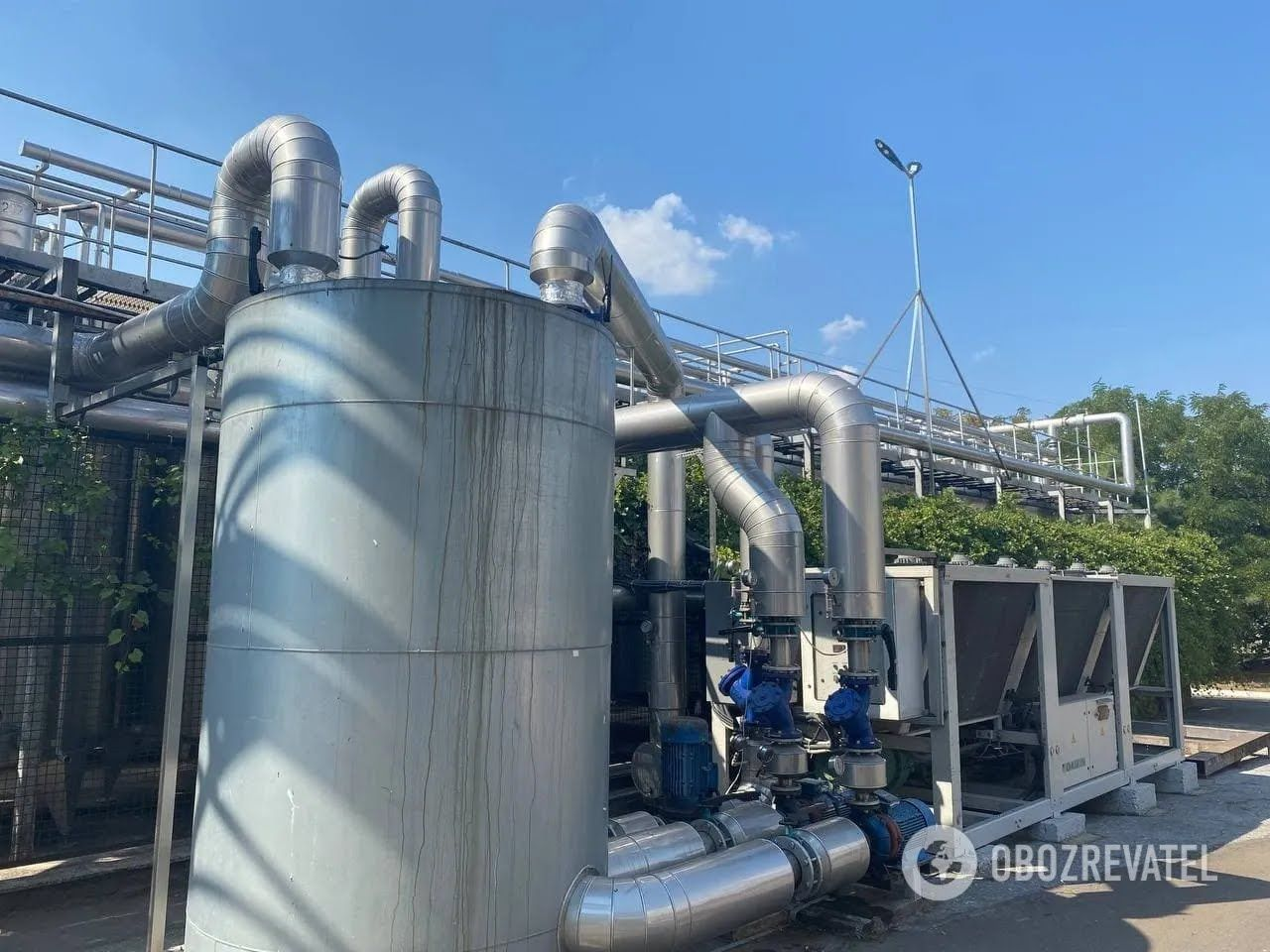 KOBLEVO переробляє за рік 10 тисяч тонн винограду