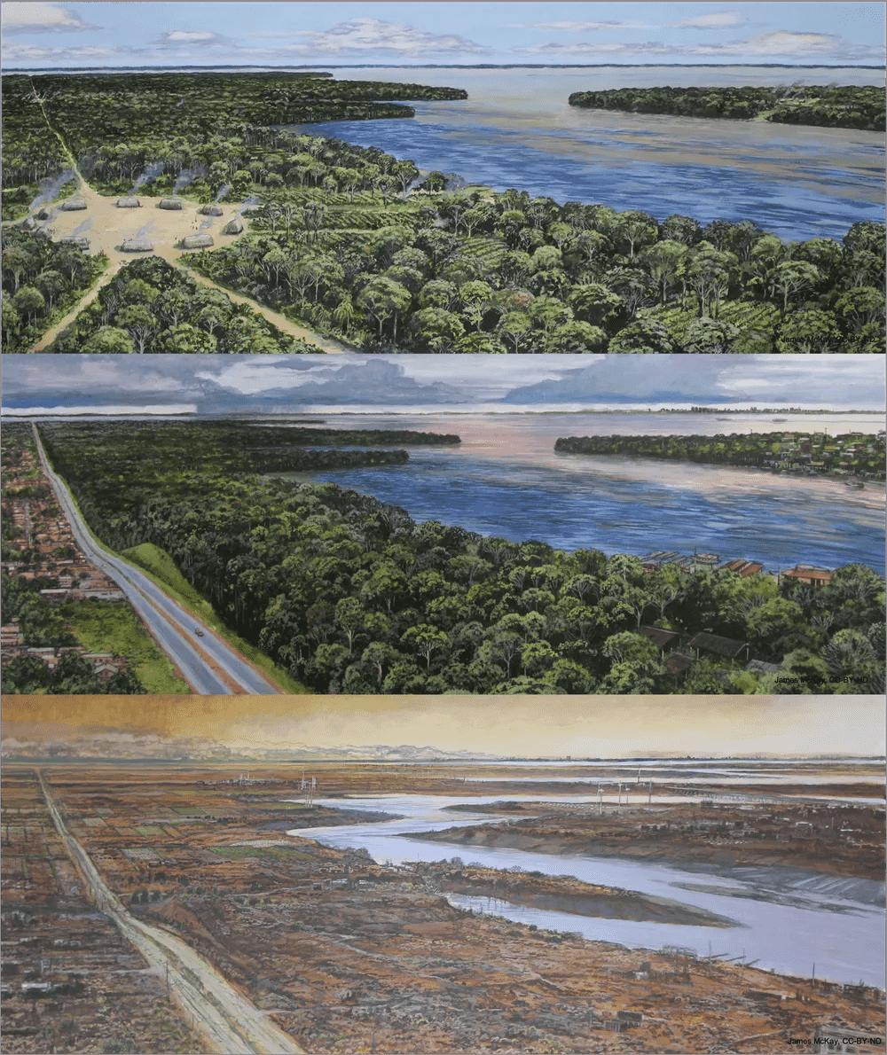 Як зміниться Амазонка