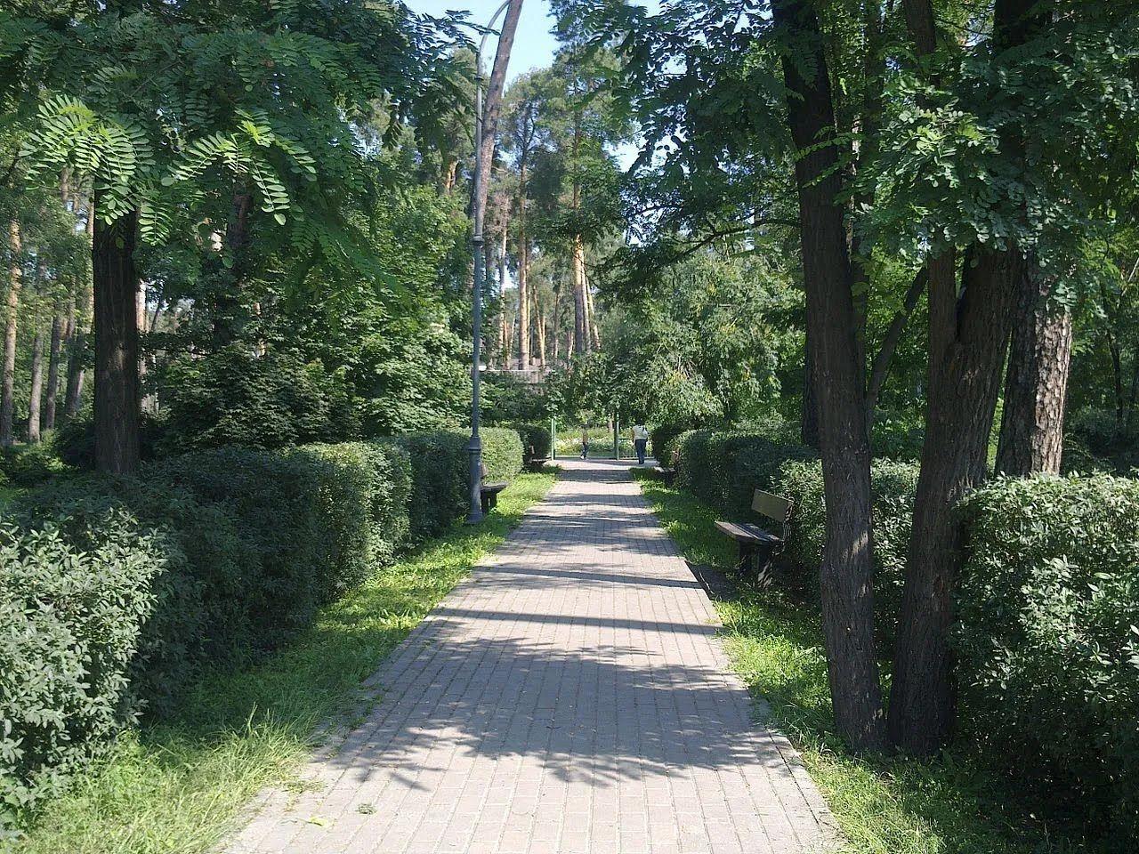 В парке есть локации для разных видов отдыха.