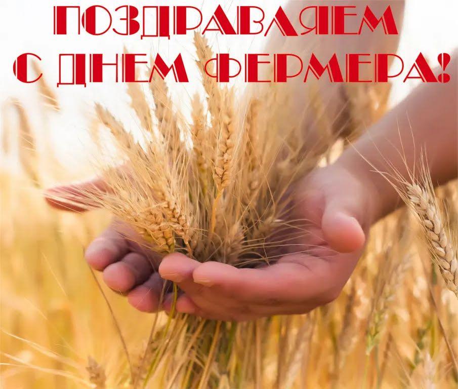 Картинка в День фермера