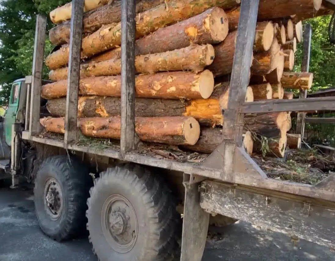 Лесовозы продолжают ездить по улице, где произошло трагедия