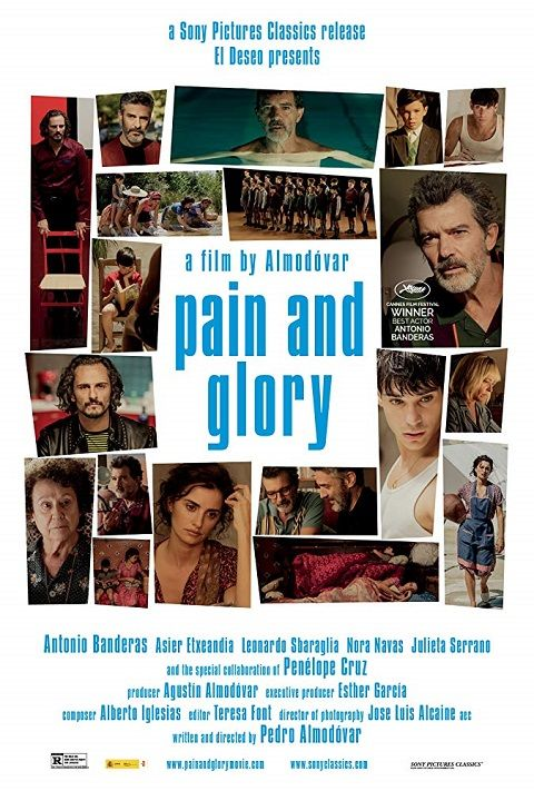Pain and Glory 2019 FRENCH BRRip XviD AC3-NoTag