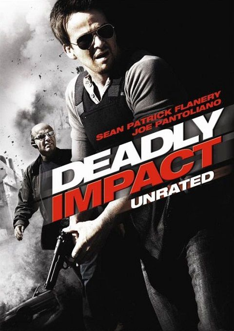 Deadly Impact 2010 FRENCH DVDRIP XVID AC3-NoTag