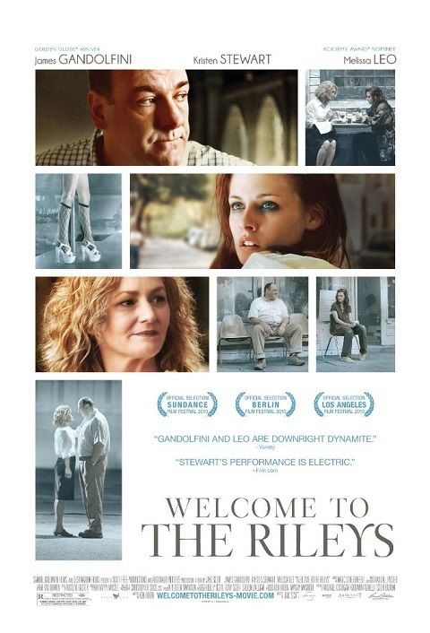 Welcome to the Rileys 2009 FRENCH BRRip XviD AC3-NoTag