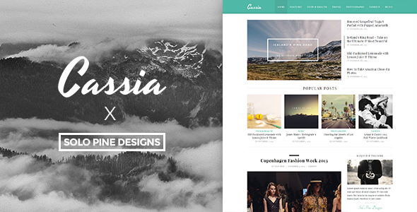 Cassia v1.1 – A Responsive WordPress Blog Theme