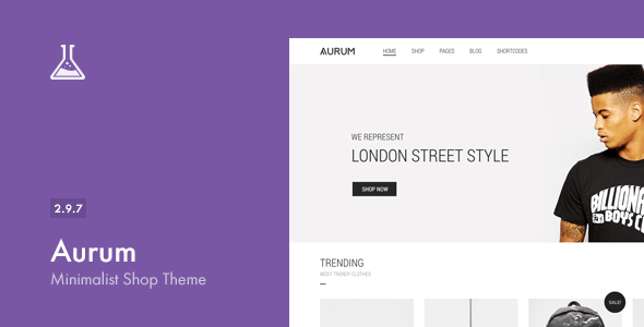 Aurum v2.9.7 – Themeforest Minimalist Shopping Theme