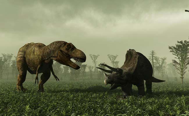 Did Dinosaurs Decline Before Chicxulub Meteor Strike? New Study Answers