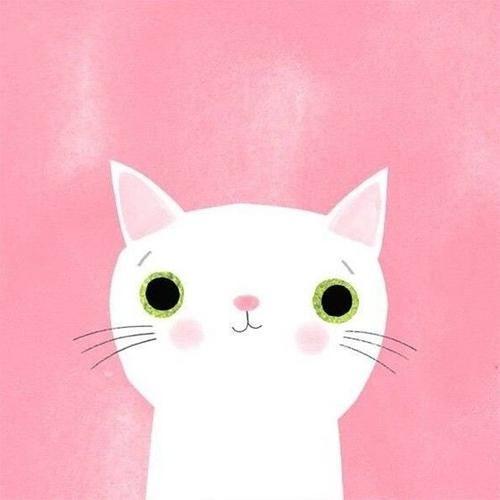 小猫戴口罩故事
