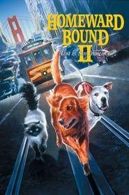 Homeward Bound II: Lost in San Francisco 1996