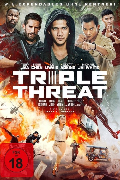 Triple Threat 2019 TRUEFRENCH WEB-DL 720p x264-STVFRV mkv
