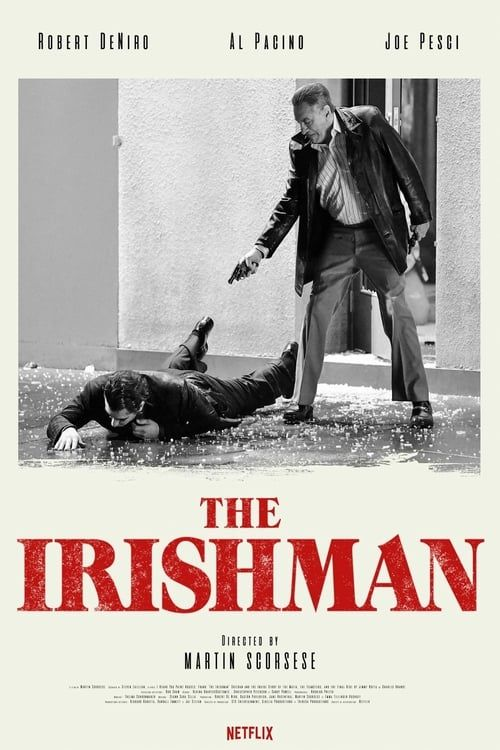 The Irishman 2019 1080p NF WEB-DL DDP5 1 ATMOS H264-CMRG