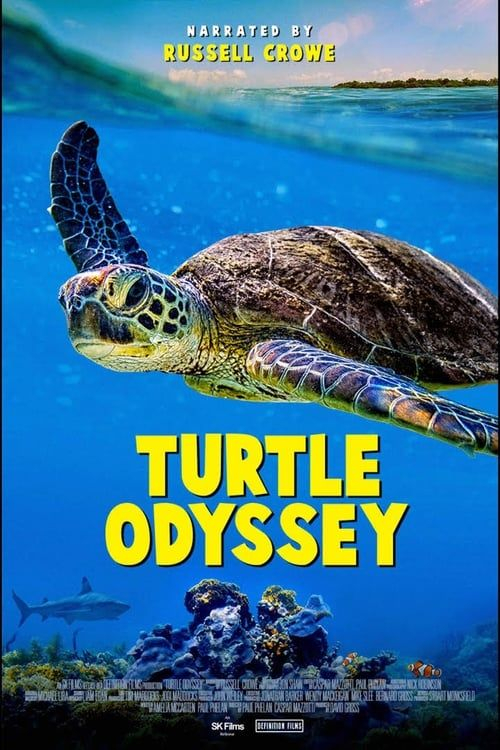 Turtle Odyssey (2018) Bluray Remux 1080 DTS HD M A