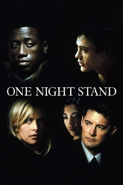 One Night Stand 1997 TRUEFRENCH DVDRip AAC x264-Prem
