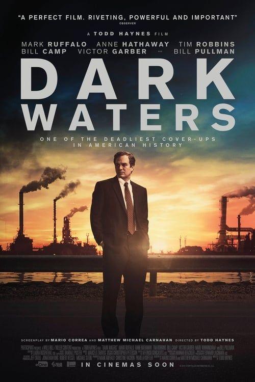 Dark Waters 2019 MULTi 1080p HDLight x264 AC3-EXTREME