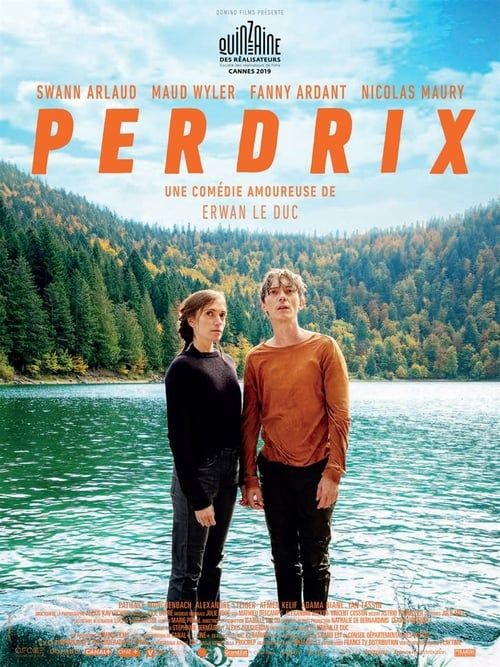 Perdrix 2019 FRENCH 720p WEB H264-EXTREME