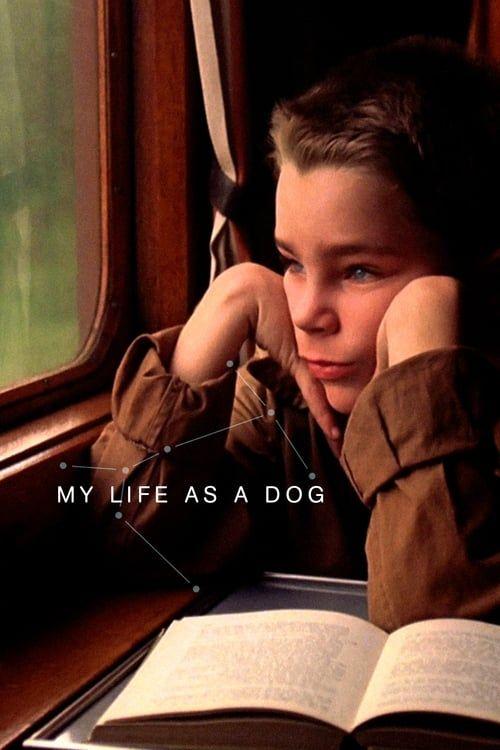 Mitt liv som hund (Ma vie de chien) 1985 CRITERION VOSTFR 1080p BDrip x264 Flac-fist