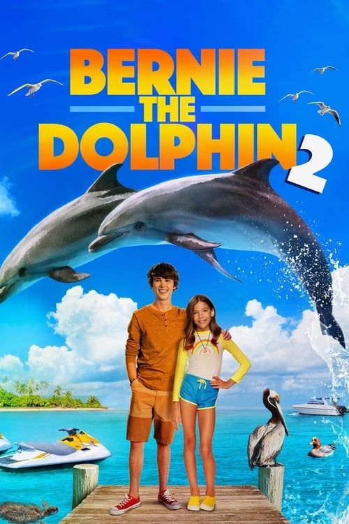Bernie The Dolphin 2 2019 MULTi TRUEFRENCH 1080p WEB x264-STVFRV