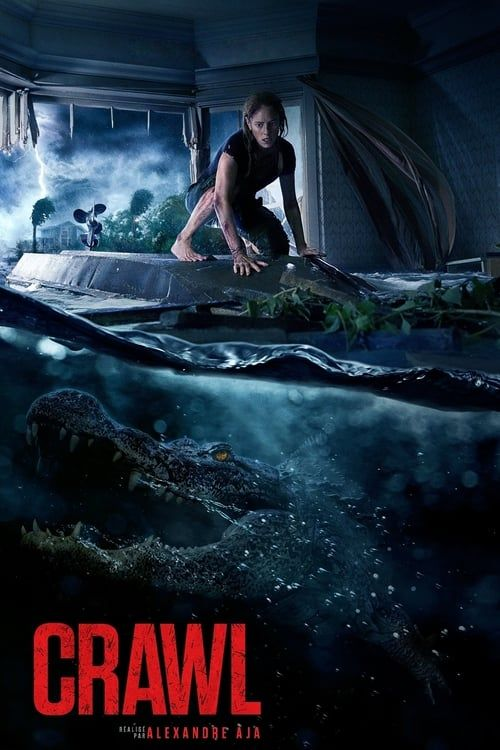 Crawl (2019) MULTi VF2 1080p 10bit HDLight BluRay x265 AC3 5 1 Portos