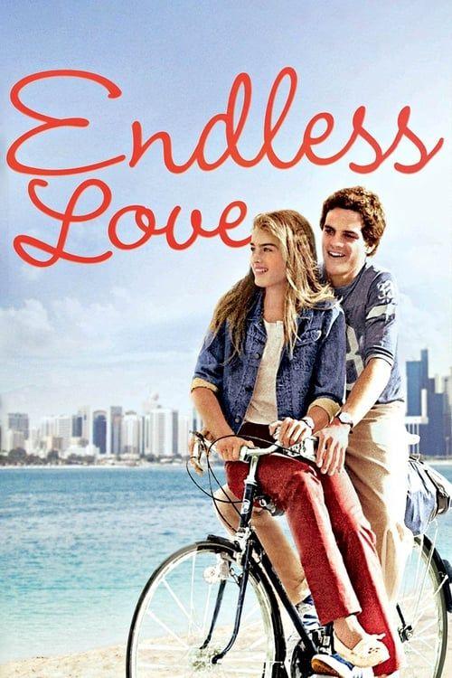 Endless Love 1981_MULTI_PAL_DVD9_Prem