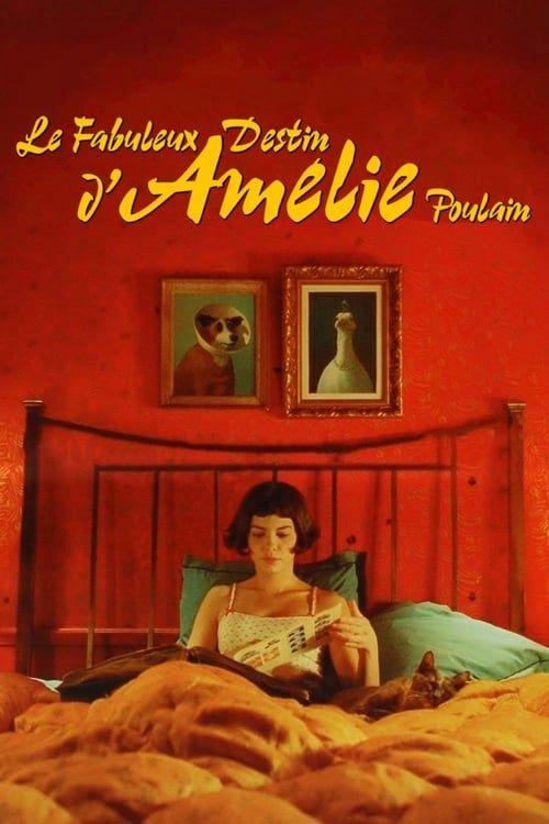 Le Fabuleux Destin d'Amélie Poulain 2001 1080p BluRay DTS x264-CtrlHD