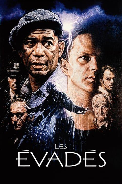 Les Évadés 1994 MULTi VFF WEB-DL 1080p AVC DD 5 1-QBDom (The Shawshank Redemption)