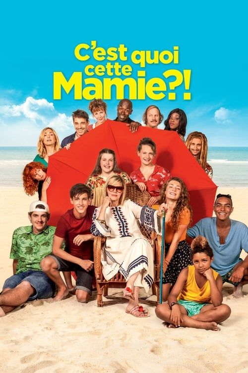 Cest Quoi Cette Mamie 2019 FRENCH HDRip XviD-EXTREME