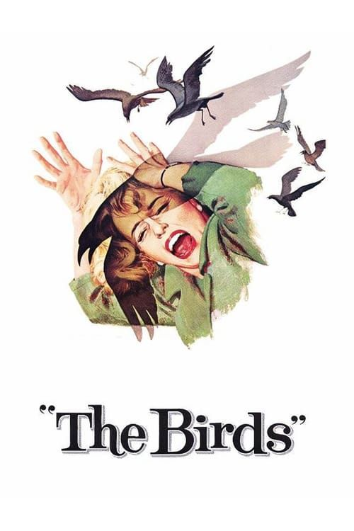 Les Oiseaux-The Birds 1963 VOSTENG COMPLETE UHD BLURAY-PRECELL