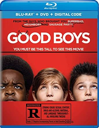 Good Boys 2019 Multi 2160p WEB-DL HDR DDP5 1 HEVC-Tokuchi