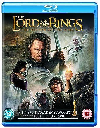 Le Seigneur des Anneaux Le Retour du Roi (2003) VERSION LONGUE MULTi VFF 1080p 10bit HDLight BluRay x265 HE-AAC 5 1-MM91