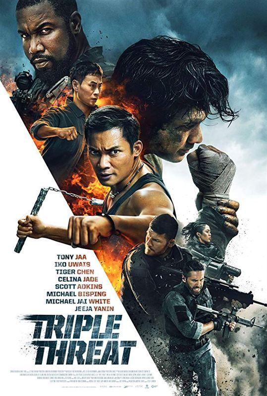 Triple Threat 2019 MULTi VFF 1080p BluRay x264-ANONA