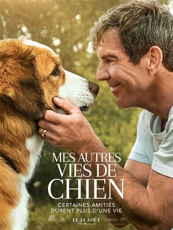 A Dogs Journey 2019 MULTi VFF 720p BluRay x264-ANONA