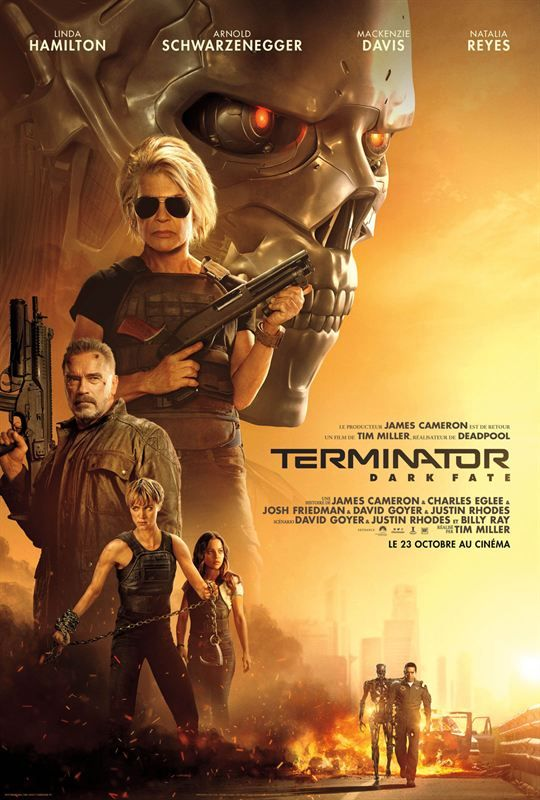 Terminator Dark Fate 2019 MULTi VFQ 720p BluRay x264-ANONA