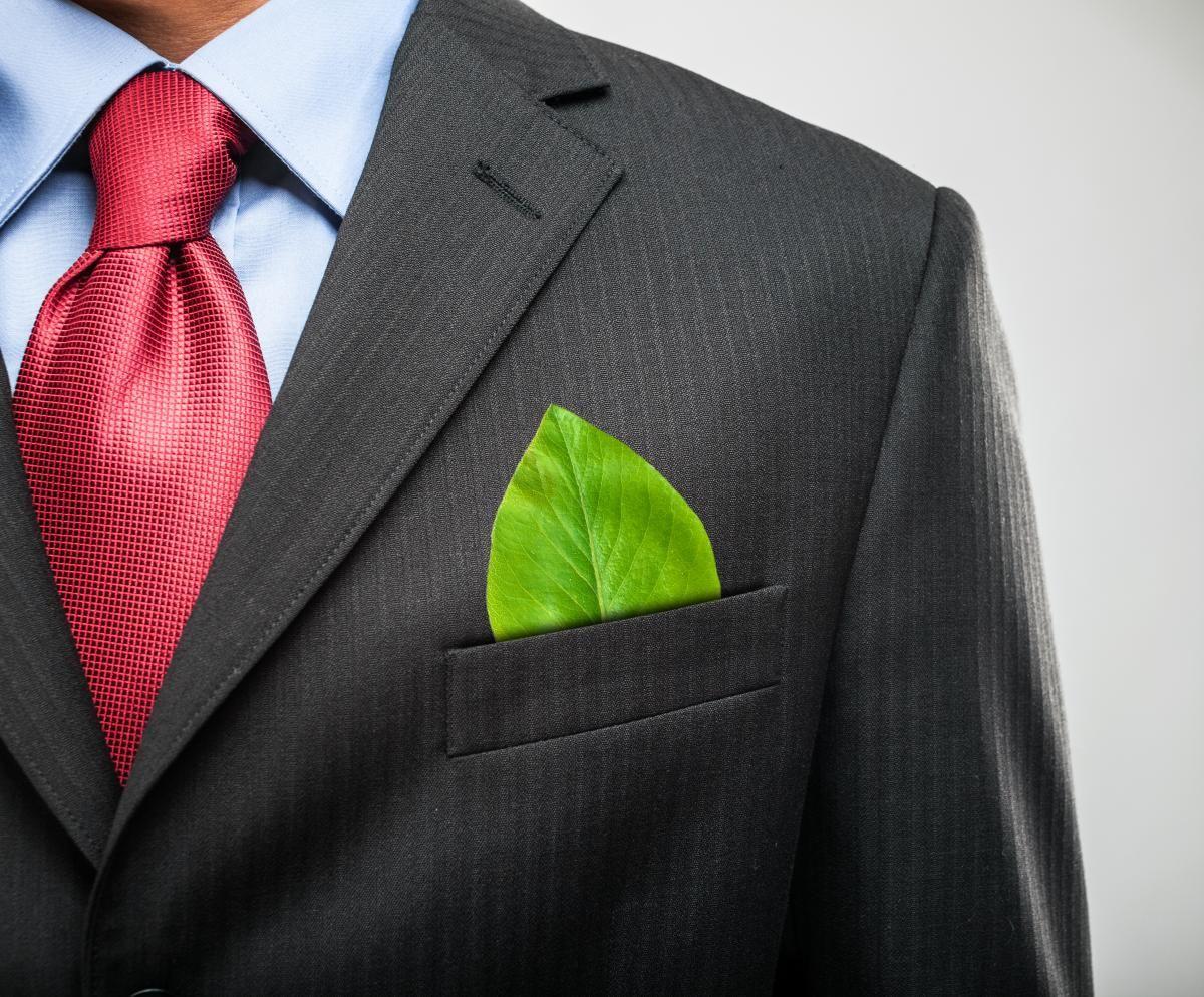 Тема экологии в Украине стала инструментом политической расправы / фото ua.depositphotos.com
