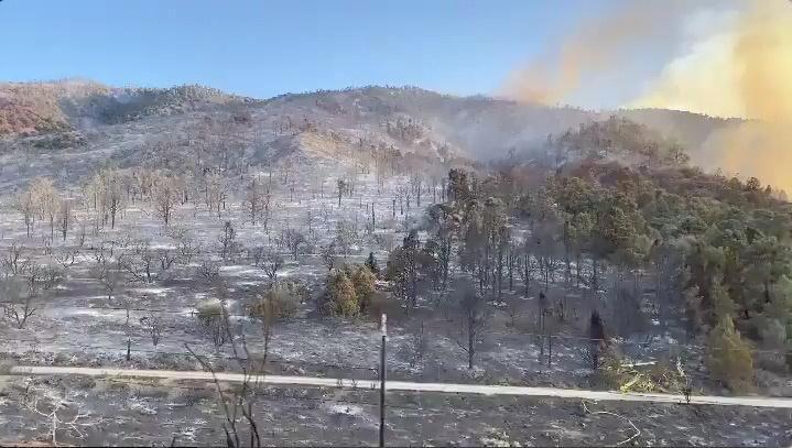 В Калифорнии продолжаются пожары / Фото REUTERS