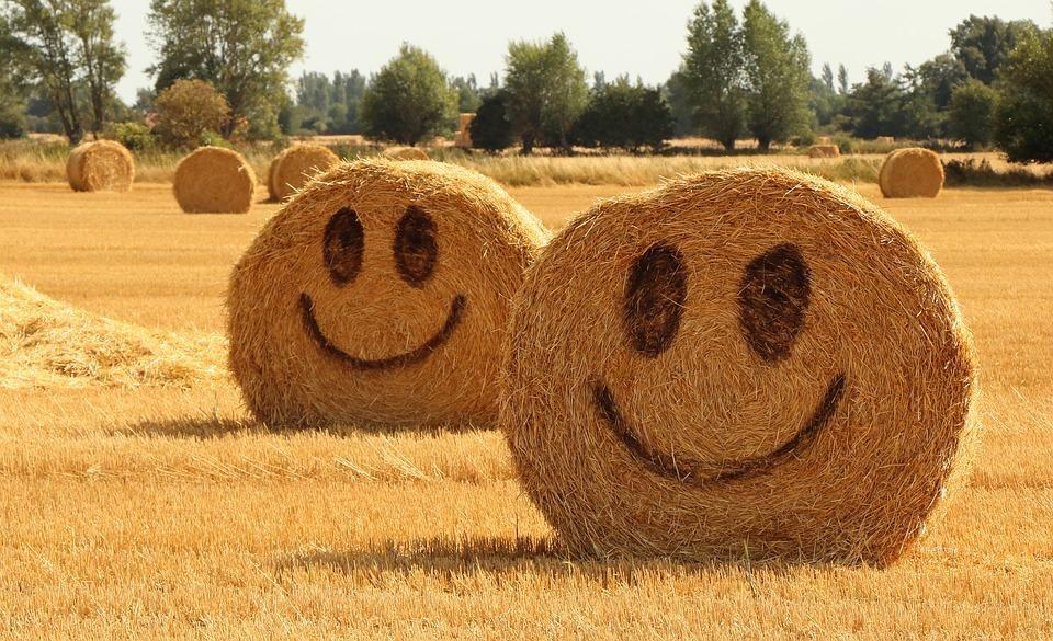 Картинки с Днем улыбки / pixabay.com