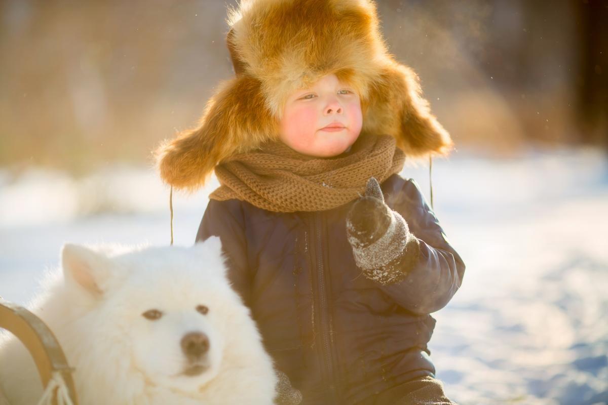 В Украину пришли настоящие морозы / Фото ua.depositphotos.com
