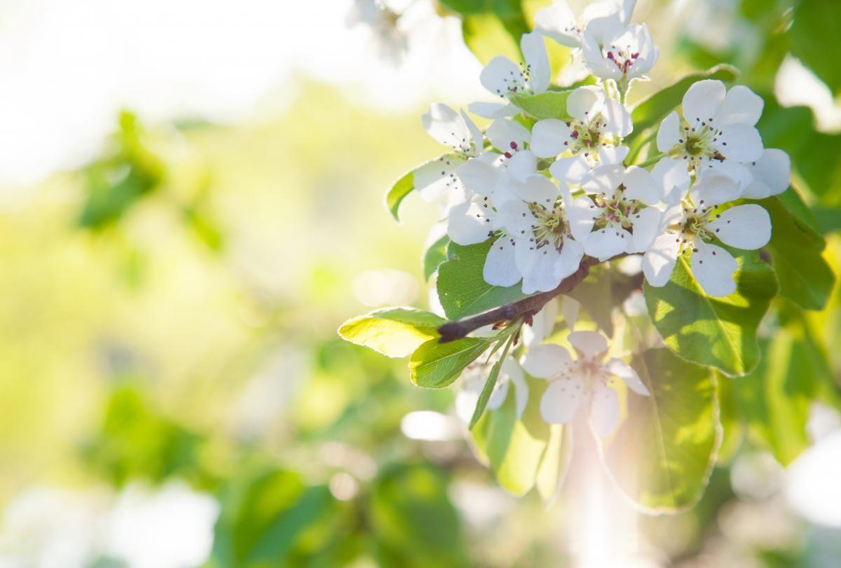 Вихідні у травні 2021 / фото ua.depositphotos.com
