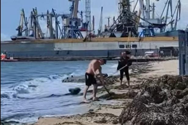 На видео видно, что на берег выбросило очень много водорослей. Коммунальщики вилами собирали их и забрасывали с суши в море / скрин видео