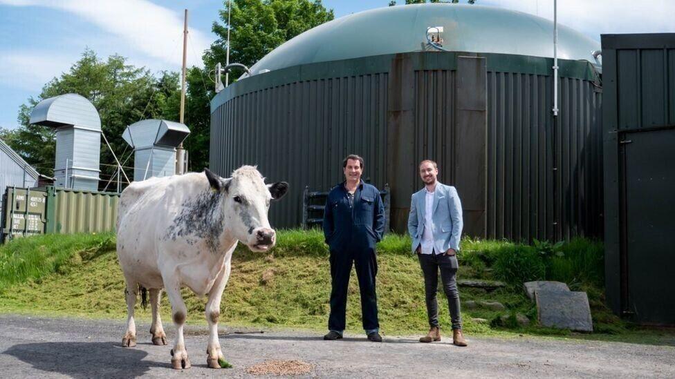 Фермер майнив криптовалюту на енергії з коров'ячого гною, але не біткоїни / фото bbc.com