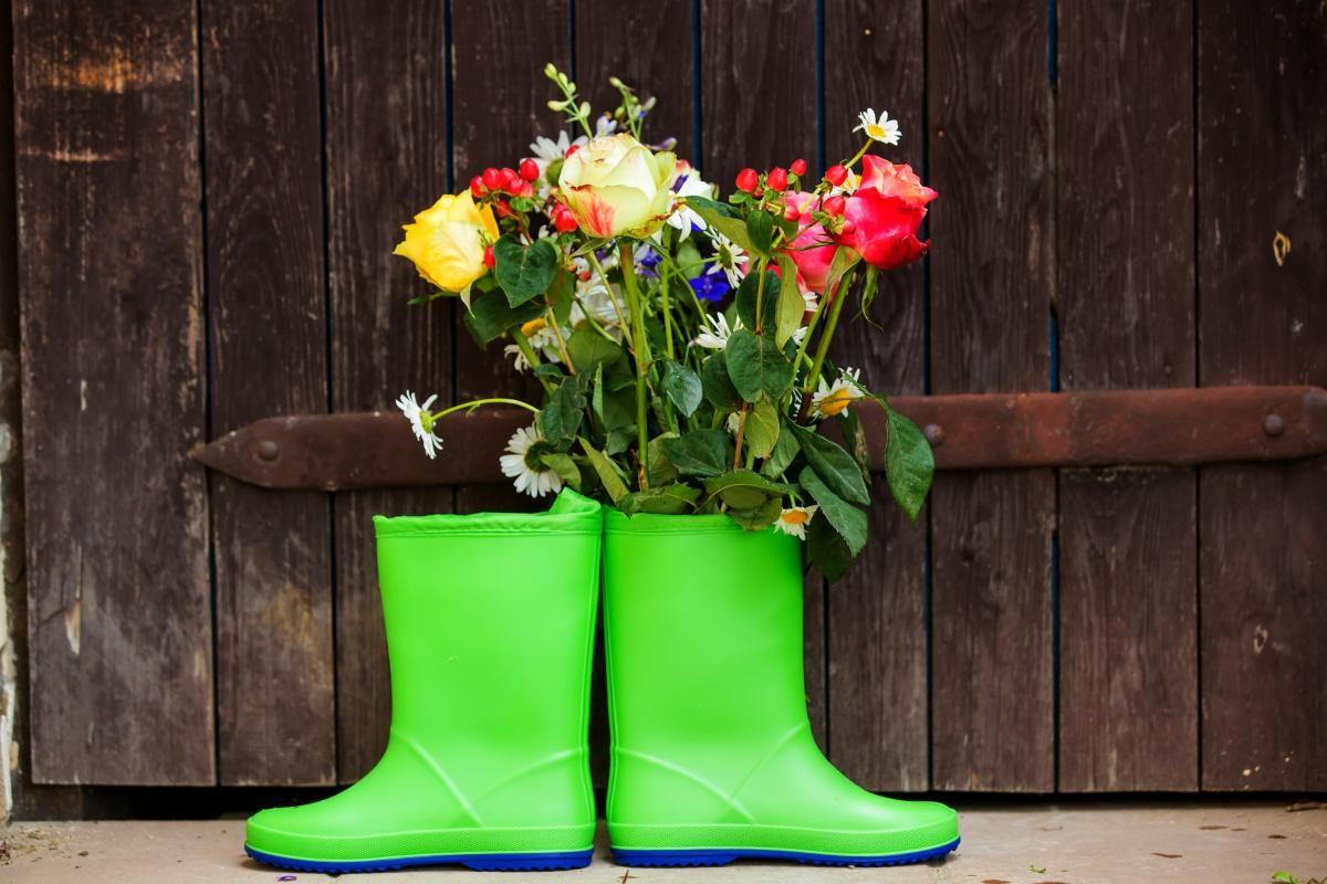 Завтра в Україні йтимуть короткочасні дощі / фото ua.depositphotos.com