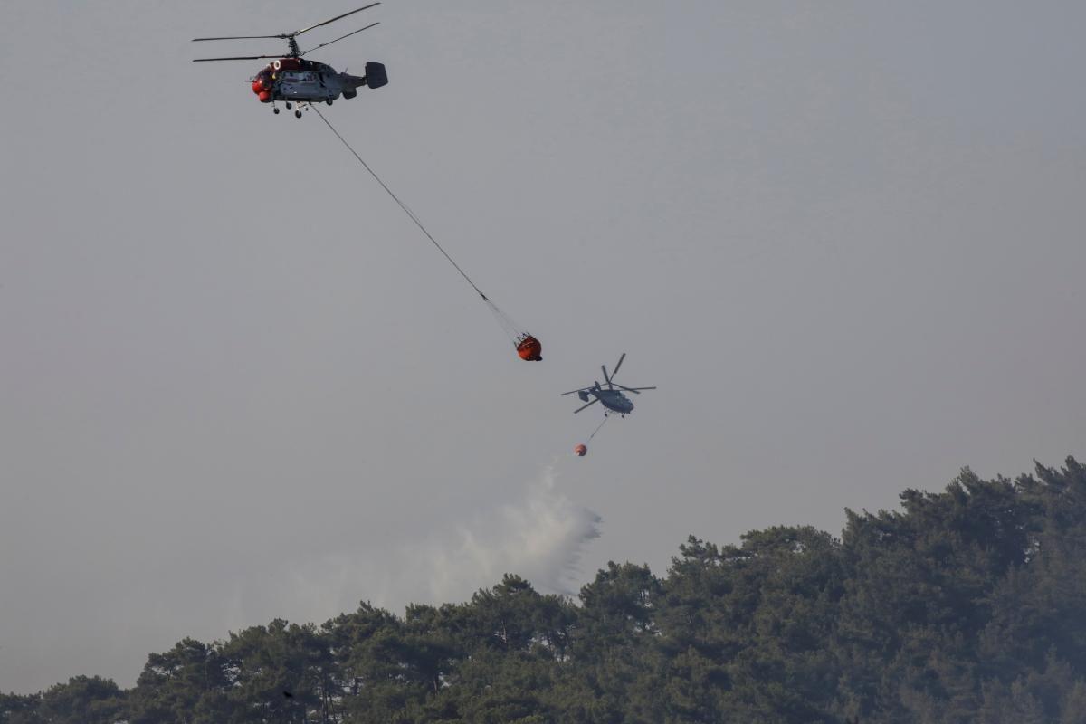 У Туреччині пожежникам вдалося локалізувати 74 з 85 бурхливих в країні лісових пожеж / фото REUTERS