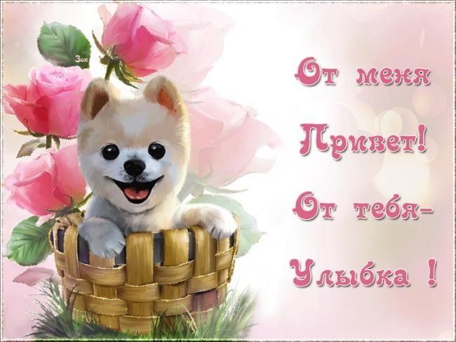 Картинка Привіт як справи / фото klike.net